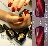 """Гель-лаки-Trendy Nails """"Кошачий Глаз"""" купить Одесса,Киев,Харьков"""