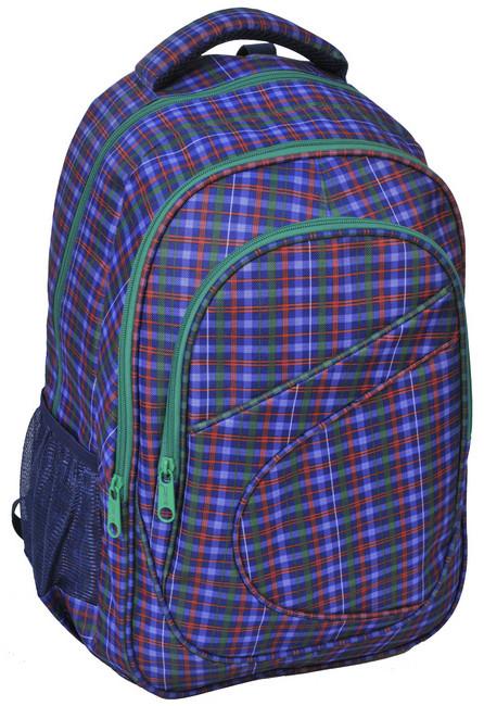 Рюкзак PASO 21 л Фіолетовий ( 15-8115B)