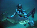 Подводной охоты — история