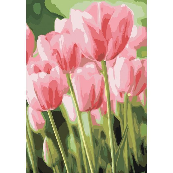 Картина рисование по номерам KHO2069 Идейка Весенние тюльпаны 35х50см набор для росписи по цифрам, краски,