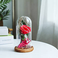 Роза в колбе с LED подсветкой (маленькая)