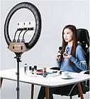 Кольцевая RGB лампа, диаметром 45 см с тремя держателем и штативом | Кольцевая лампа + подарок штатив, фото 8