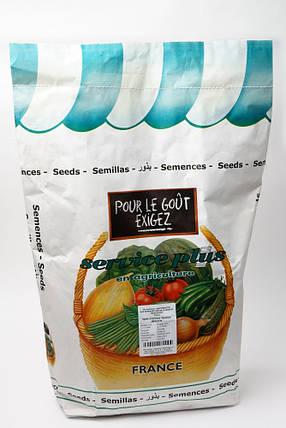 Семена свеклы Детройт 5 кг, GSN Semences, фото 2