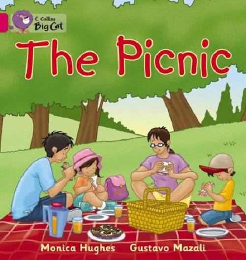 Big Cat  1A The Picnic. Workbook