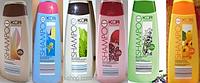 Шампунь для нормальных и сухих волос KÜR FRUCHT  в асортименте
