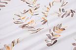 """Поплін шириною 240 см """"Велике листя акації"""" коричневе на білому (№3310), фото 2"""