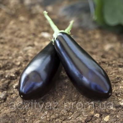 Семена баклажана Шарапова F1, 1000 семян