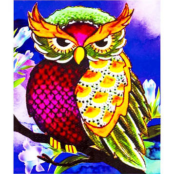 Картина за номерами 40х50 см DIY Розумна сова (FX 30317)