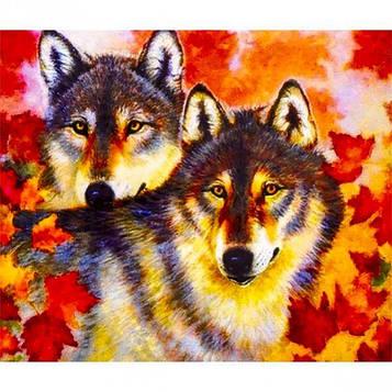 Картина за номерами 40х50 см DIY Осінні вовки (FX 30423)