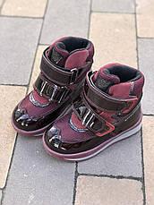 Ботинки Minimen 21BORDO Бордо, фото 3