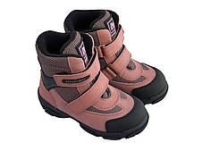 Ботинки Minimen 12PUDRA Пудра, фото 2