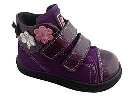 Ботинки Minimen 67FIOLET Фиолетовый
