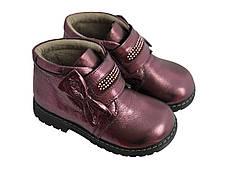 Ботинки GONKA 6BANT Бордо, фото 2