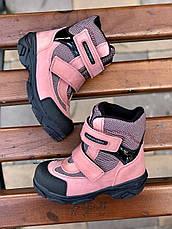 Ботинки Minimen 15PUDRA Пудра, фото 2
