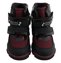 Ботинки Minimen 15BORDO Бордо, фото 3