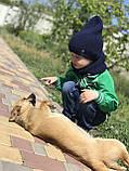 Демисезонная детская вязаная шапочка и снуд для мальчика и девочки ручной работы весна осень., фото 6
