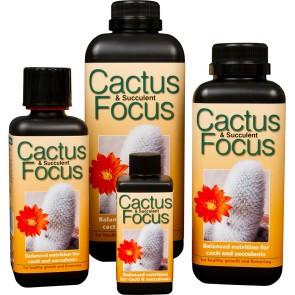 Удобрение для кактусов и суккулентов Cactus Focus 500 мл