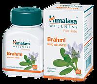 Брами, Брахми, Brahmi Himalya №60