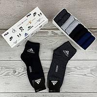 Мужской набор носков Adidas, комплект однотонных носков адидас 8 шт. в коробке