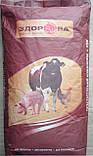 Добавка для свиней фініш 65-120кг Avamix C6-7 W Prime 10%, фото 3