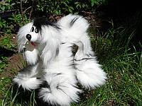 Собака маріонетка. Жива пухнаста іграшка на нитках