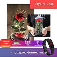 20 см Вечная роза в стеклянной колбе с LED подсветкой, ночник большая красная роза