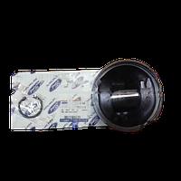 87 72741 STD 320-380 л. с. Поршень з кільцями (Форд Карго)