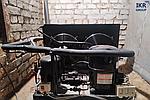 Новий 2021 рік команда ІКР ГРУП  розпочала із запуску камери зберігання грибів у м. Рівне