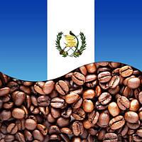 Марагоджип Гватемала (Guatemala)