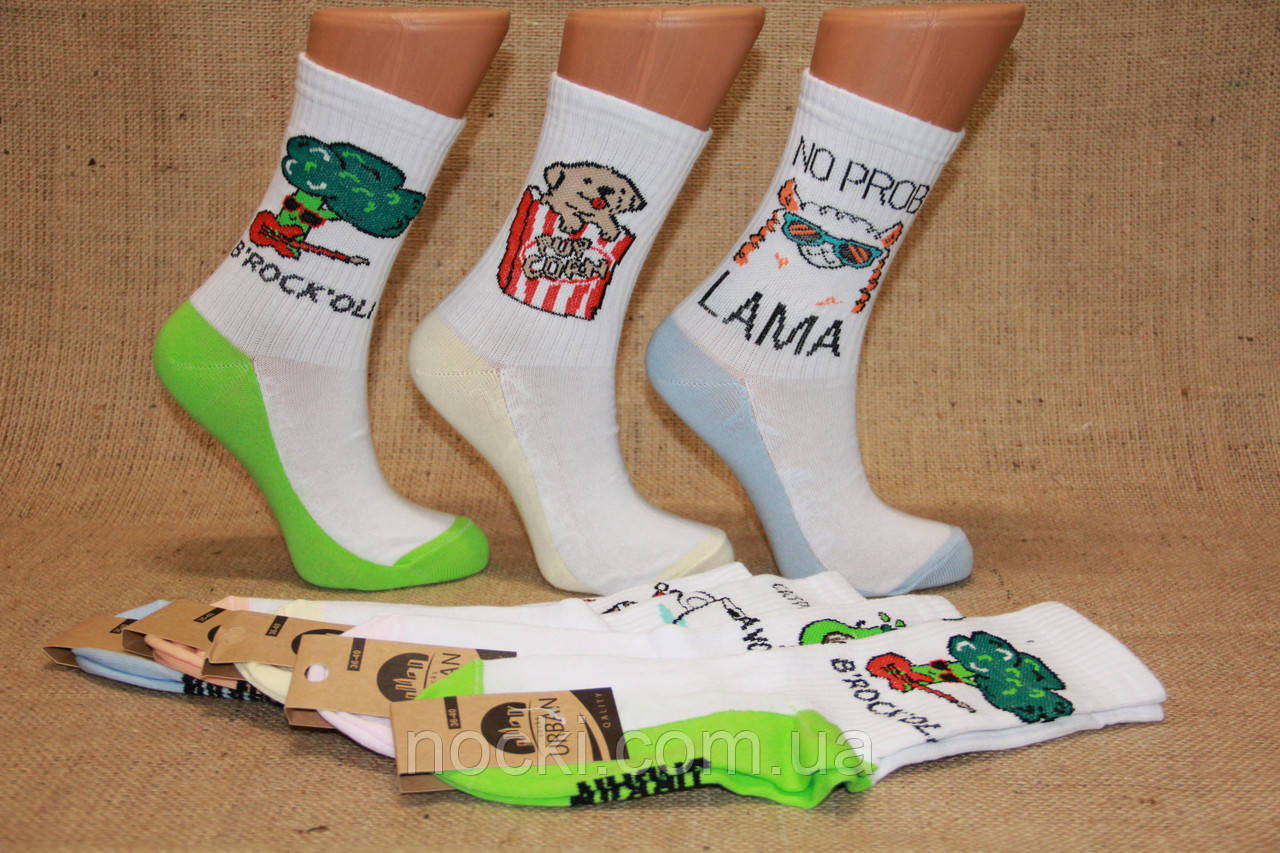 Жіночі шкарпетки середні ТЕНІС НЛ з написами 18-19 см TC-8 NO PROB-LAMA
