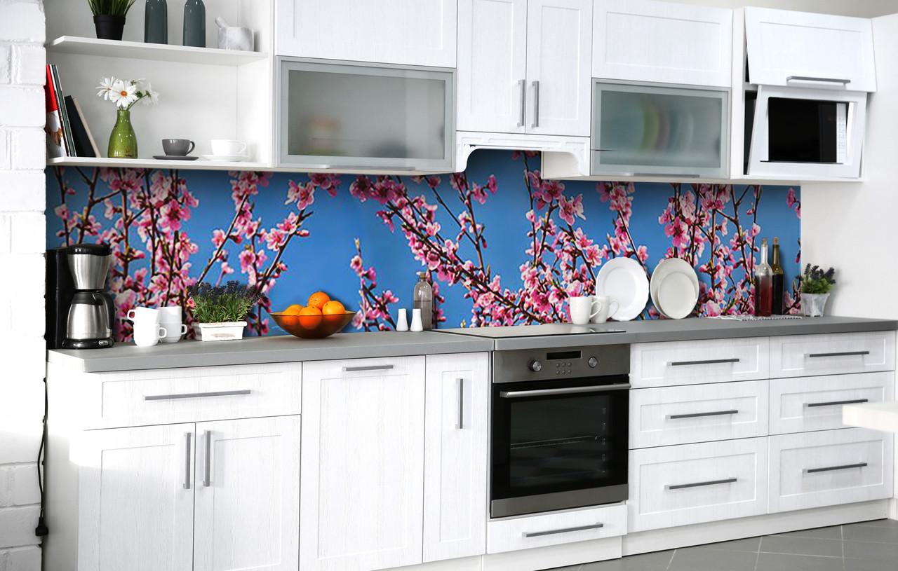 Кухонный фартук 3Д пленка Розовая Сакура на фоне неба фотопечать наклейка на стену 60х250см Цветы Голубой