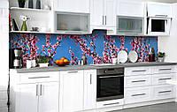 Кухонний фартух 3Д плівка Рожева Сакура на тлі неба фотодрук наклейка на стіну 60х250см Квіти Блакитний, фото 1