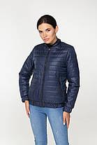 Весняна коротка стьобана куртка синього кольору на блискавці, розмір від 44 до 58, фото 2