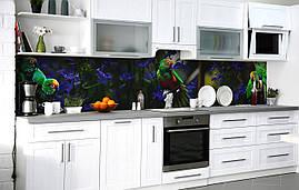 Кухонний фартух 3Д плівка Милі нерозлучники фотодрук наклейка на стіну 60х250см Птахи