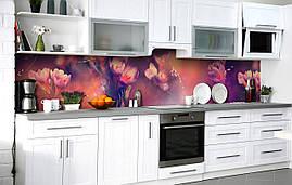 Кухонный фартук 3Д пленка Крокусы в росе фотопечать наклейка на стену 60х250см Цветы