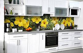 Самоклеющаяся Пленка для Фартука  Желтые Цветы Звёзды наклейка на стену 60х250см 0
