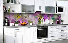 Кухонный фартук 3Д пленка Жёлтая трясогузка фотопечать наклейка на стену 60х250см Птицы