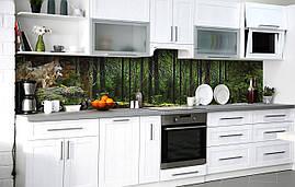 Кухонний фартух 3Д плівка Господарі лісу фотодрук наклейка на стіну 60х250см Тварини