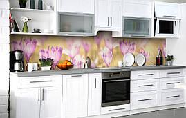 Кухонный фартук 3Д пленка Бутоны крокуса фотопечать наклейка на стену 60х250см Цветы