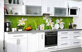 Кухонный фартук 3Д пленка Ромашки в траве фотопечать наклейка на стену 60х250см Цветы Зеленый