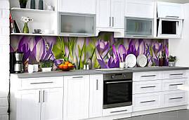 Кухонный фартук 3Д пленка Бутоны шафрана фотопечать наклейка на стену 60х250см Цветы