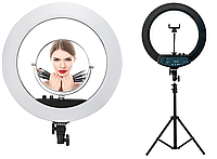 Кільцева LED лампа RL-18 II діаметром 44 см з дзеркалом, 7357