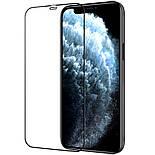 Защитное стекло iPhone 12 Nillkin PRO Premium, фото 3