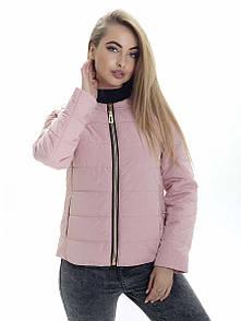 Куртка жіноча весна Irvik ZK133 рожева
