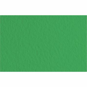 "Папір для пастелі ""Tiziano B2 №12 prato 50х70см 160г/м2 №16F2112 (зелений)"