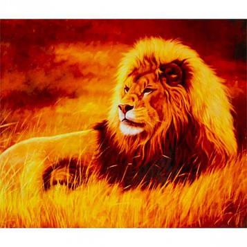 Картина по номерам 40х50 см DIY Лев (FX 30367)