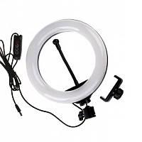 Кольцевая лампа D8, 20 см