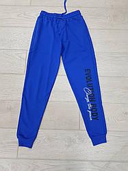 Спортивні штани чоловічі з принтом сині