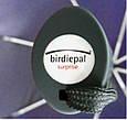 Мужской зонт автомат EuroSCHIRM Birdiepal Surprise 3427-BGR/SU17428, фото 5