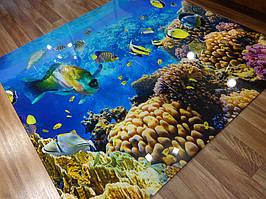 Стеклянное панно с фотопечатью на стену ванной - Морской мир 1